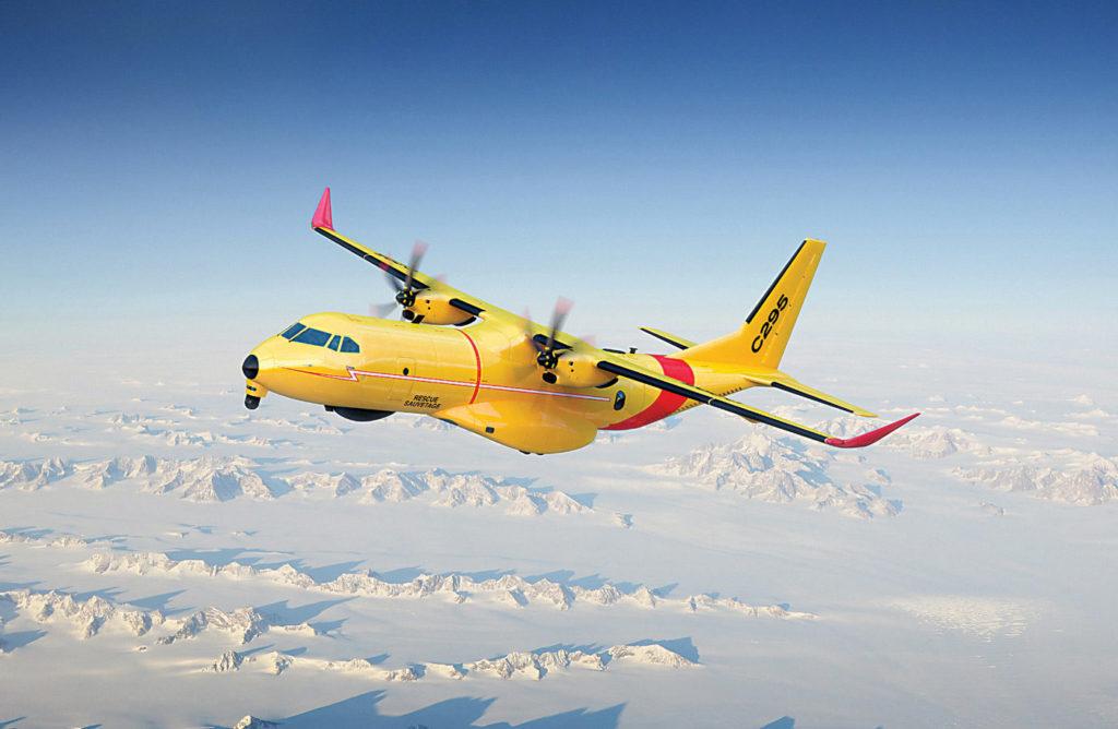 C295W in flight