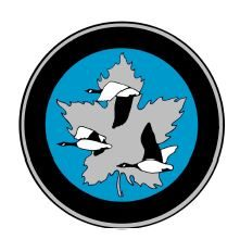 Canadian Aeronautics and Space Institute logo