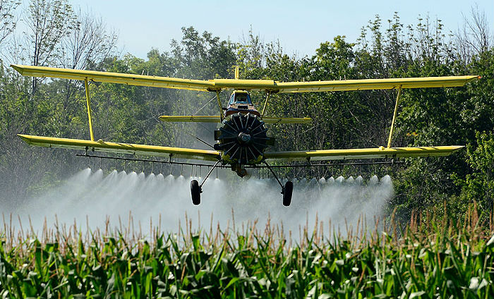Agricultural aviators fly as low as 10 feet off the ground, meaning they share airspace with UAVs that are limited to flying no more than 400 feet above ground level. Eric Dumigan Photo