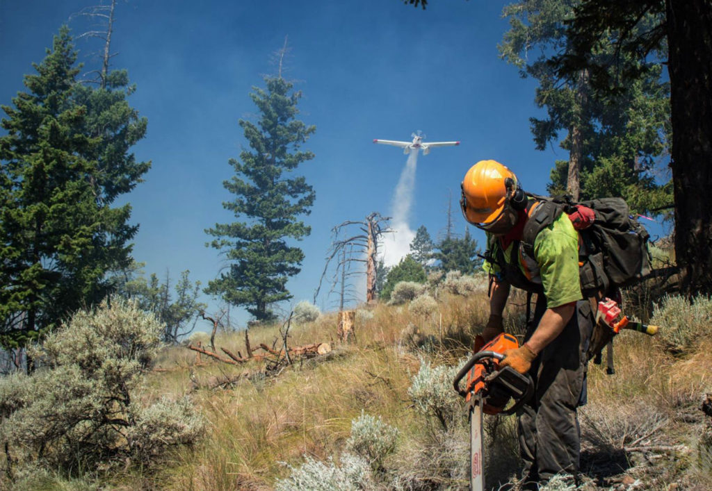A worker wields a chainsaw on the ground while an air tanker flies overhead. BC Wildfire Service Photo