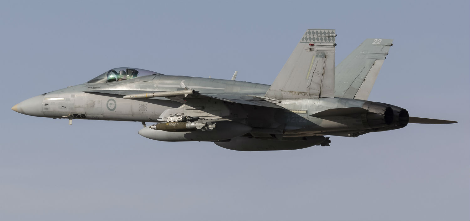 F-18 Hornet in flight