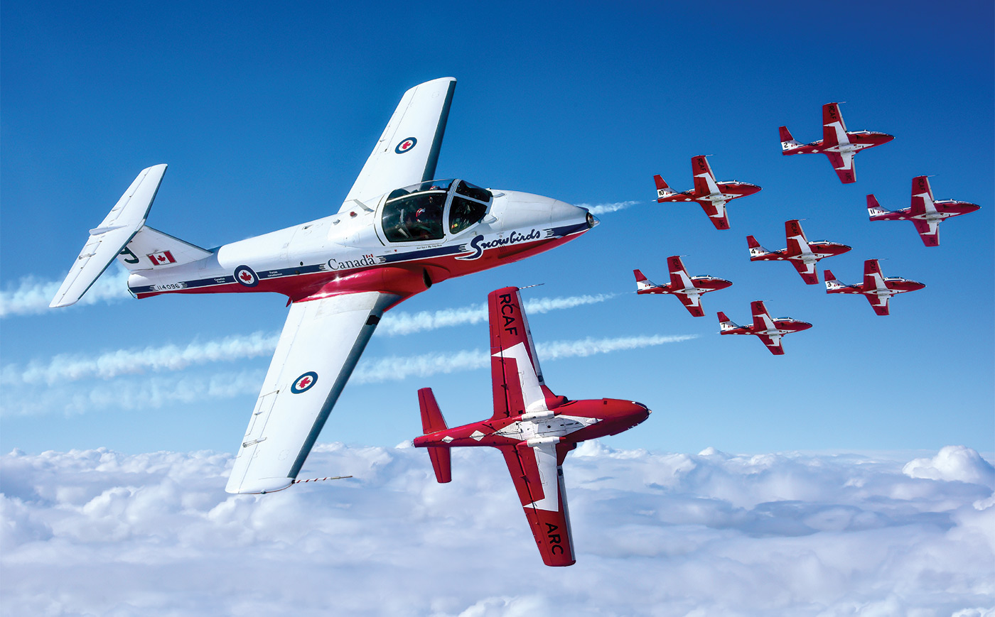 Canadian Forces Snowbirds in flight