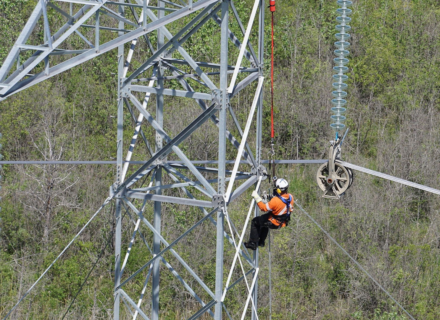 Man works on power line