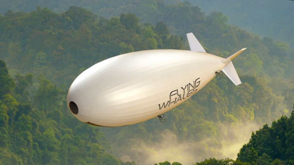 Flying Whales Image