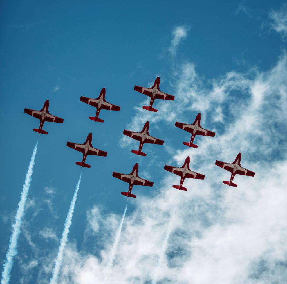 CF Snowbirds Photo